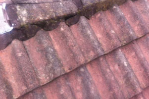 seal-replace-roof-tiles-10