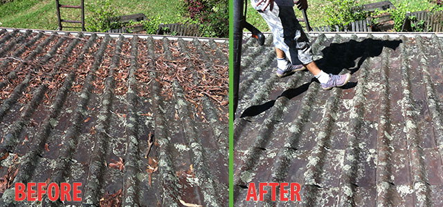 roof-cleaning-2